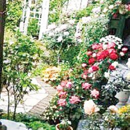 【5月12日に見学会】バラやクレマチスが見頃「オープンガーデン&バラの見学会」相模原市