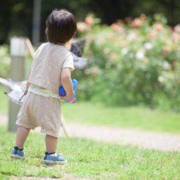 【横浜市都筑区】「公園であそぼう!」@不動原公園