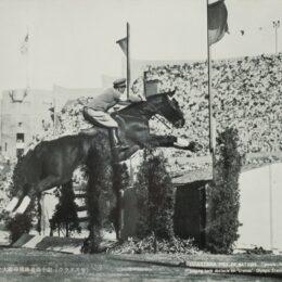 横浜根岸・馬の博物館で「馬と五輪」の特別展<6月20日まで>