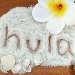 5月30日ザ・ウィングス海老名で「ハワイアンフェスタ」開催