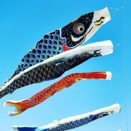 青空をす~いすいっ 藤沢市鵠沼で鯉のぼりを見つけたよ