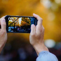区の魅力発信に協力「金沢区区民カメラマン」を募集<申し込み締め切り5月21日>