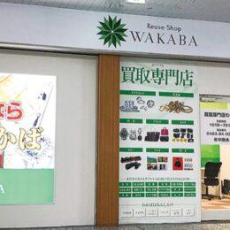 【買取店のSDGsとは?】誰でも簡単に参加できる!買取店WAKABA小田急マルシェ秦野店を取材しました