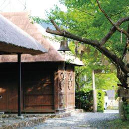 〈記者レポ〉恋愛、じゃなくて健康のほう!@山北町丹沢湖記念館・三保の家