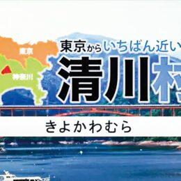四季折々の魅力を紹介!清川村プロモーション動画