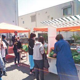 【出店費用無料】株式会社ハッソー 青空市の出店者を募集 (大和市)5月16日開催