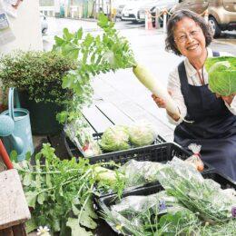 【横浜市緑区】旬な野菜を販売中 毎月2回第1・3水曜日、野菜マルシェ@中山 Tamacafe前