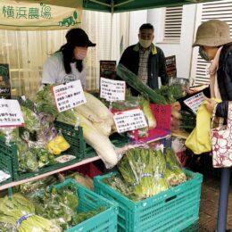 横浜市中区の麦田地域ケアプラザに地場野菜が「やってくる〜」 地産地消と交流促すマルシェ