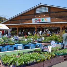 新鮮!朝採れ!地場産農産物はJAあつぎの直売所『夢未市』で決まり!肉や手作り加工品、花苗など約1,000アイテムが並ぶ
