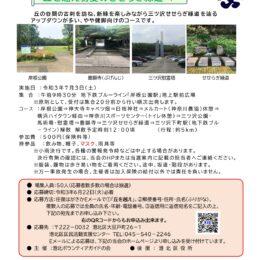 【要事前申込】7月3日、初夏のせせらぎ緑道を辿る ガイドツアー〈横浜市港北区〉