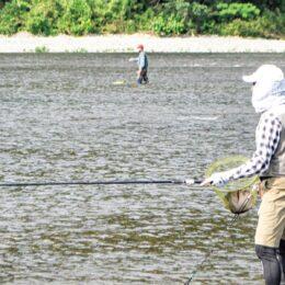 太公望、2021年も相模川に アユ釣りシーズン到来