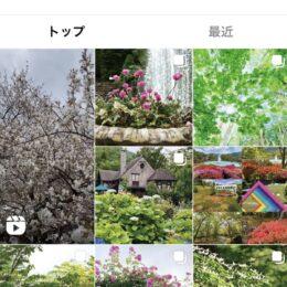 箱根町の観光施設が連携「#花咲く箱根」SNSで発信中!