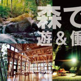 【1泊2日体験ガイド】神奈川県小田原市「いこいの森」を遊びつくす!!キャンプや外遊び、リモートワークまで対応した話題の施設を家族で満喫
