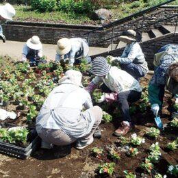 <津久井湖城山公園>花壇や植物の管理を行うパート職員を募集!
