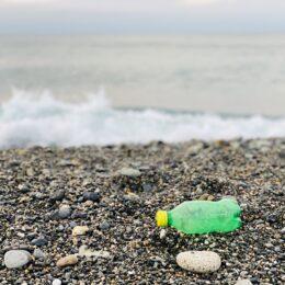 毎月定例海岸清掃【油壷クリーンウォーク】【三戸浜ビーチクリーン】の2回参加者募集