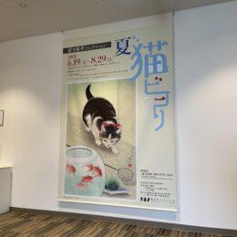 あつまれネコ好き!藤沢市アートスペースで『招き猫亭コレクション 夏‐猫ビヨリ』展