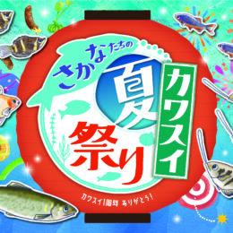 「さかなたちのカワスイ夏祭り」川崎水族館で夏休みの特別企画展示!涼しい夏まつり~~