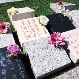 横浜市鶴見区の光永寺で〝小さなお墓たち〟をレポ。時代のニーズに合わせた供養を考える
