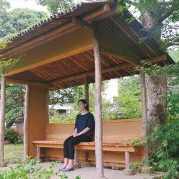 【小田原市松永記念館】7月4日からリニューアルオープン!資料手掛かりに庭園復元、今は睡蓮が見頃!