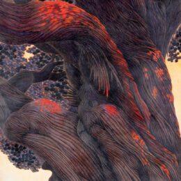 湯河原在住の五十嵐義昌さん『五十嵐義昌展 色鉛筆の世界』開催!色鉛筆の可能性を追求!