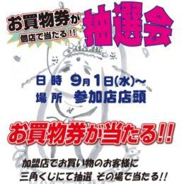 地蔵まつり抽選会/花みずき通り商店会(秦野市)