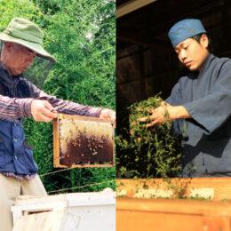 """【返礼品""""わたしが作っています""""】高梨茶園と大津養蜂園を訪ねて/秦野市ふるさと納税"""