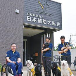 【クラウドファンディング】盲導犬・介助犬・聴導犬の補助犬育成資金 募る@公益財団法人 日本補助犬協会