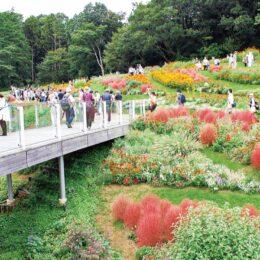 「里山ガーデンフェスタ」2021年秋の公開中止 Webで園内を配信予定!