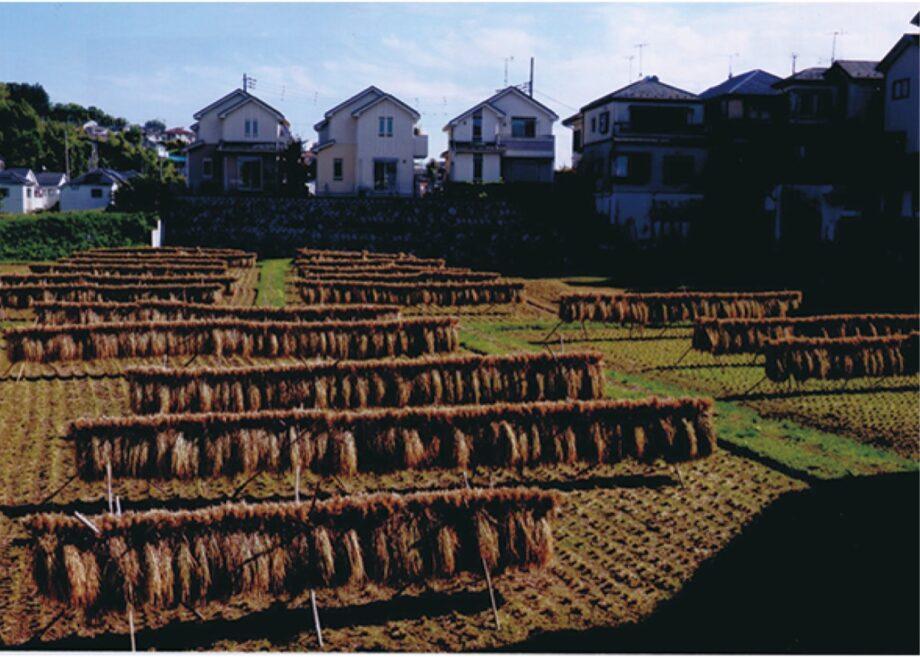<フォトコンテスト>川崎市宮前区のいいところを写真とメッセージで!10月から作品募集