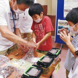 室内で多摩川の自然と触れ合う体験活動<川崎市中原区・新丸子こども文化センター>