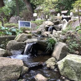 横浜市港北区の熊野神社市民の森近く「師岡熊野神社」で水の流れに癒される ウォーキングやお散歩にお勧め