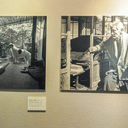 【小田原・松永記念館】特別展「お茶をする、遊ぶ、生活する-耳庵が愛した記念館-」開催中!