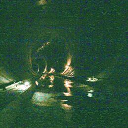 川崎市麻生区 親子で楽しく学ぼう!~巨大地下トンネルのしくみと鶴見川の生きもの観察