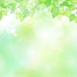 特別展「よみがえる中世のアーカイブス」@神奈川県立金沢文庫
