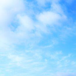 【事前申込不要】ウオーキングイベント 海老名市内を巡る 約10Kmのコース@瀬谷水緑の健康ウオーク