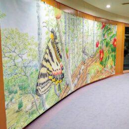 南足柄市女性センターに巨大な昆虫のタペストリーが出現!『舘野鴻 原画展』をPR