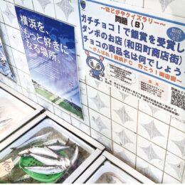 【保土ヶ谷区】横浜FC×区内商店街 クイズラリーを開催中 抽選でプレゼントも