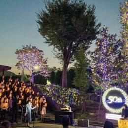 <川崎市・聖マリアンナ医科大学> 創立50周年を祝し約8万球のイルミ点灯!